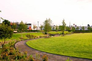 Park Art|My WordPress Blog_21+ Park Foundation Board  Background